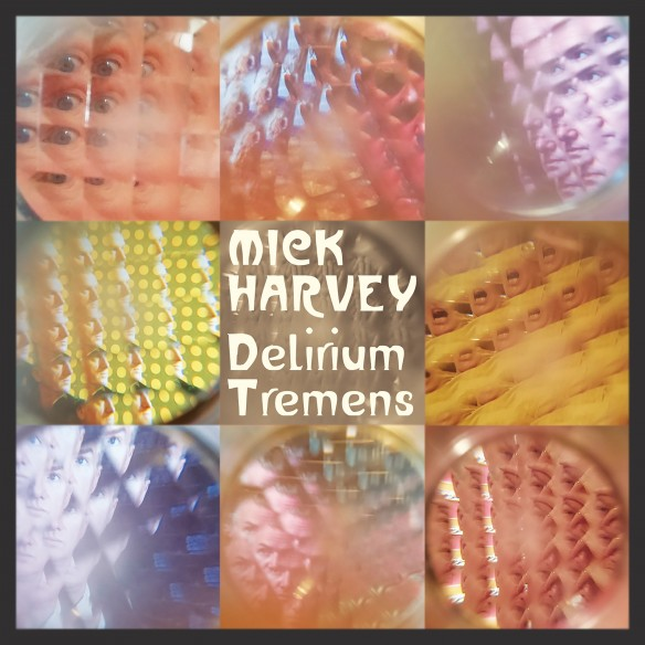 mick_harvey_delirium_tremens